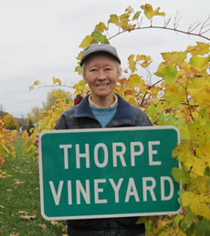 fumie thorpe, owner thorpe vineyard